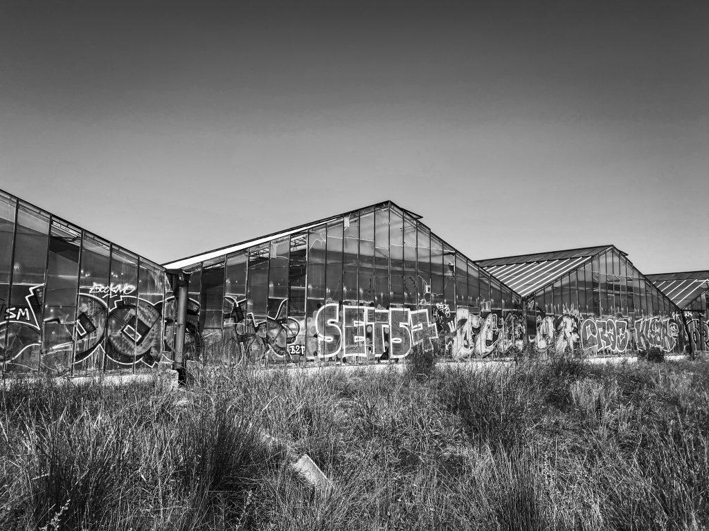 Riviera Plants Company Le Muy - Glasshouse graffiti